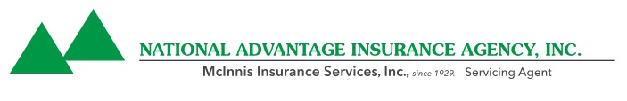 national advantage insurance agency logo